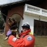 Fear of disease spurs on urgent clean-up in flood-devastated Bosnia