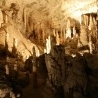 Postojna Cave Visitor Number Highest in 24 Years