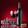 Slovenia Shaping Up for Fight Over Teran Wine