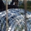 Slovenian erecting wire fence on sections of Croatia border